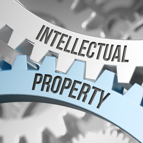 Industrial Property Law